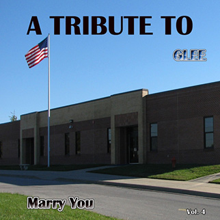 Hit Collective – A Tribute to Glee, Vol. 4 (Marry You)