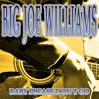 Big Joe Williams – Baby Please Don't Go