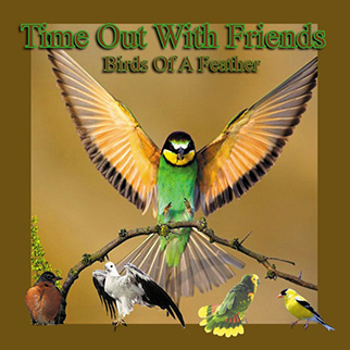 Costanzo – Birds Time Out With Friends (Birds of a Feather)