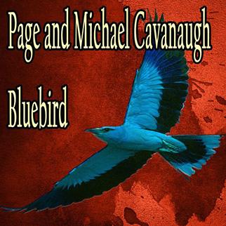 Michael Cavanaugh – Bluebird