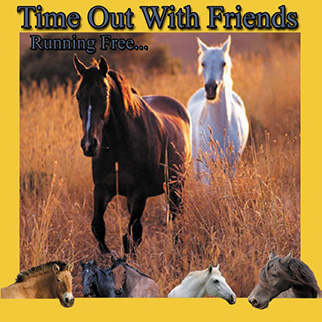Costanzo – Horse Time out with Friends (Running Free)