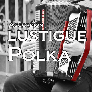 Accordion Lustigue Polka, Vol 4 – Duo Accordions