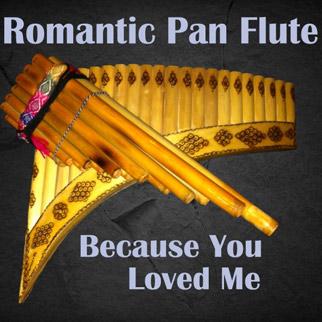 Bartosz Wielgosz – Romantic Pan Flute Because You Loved Me
